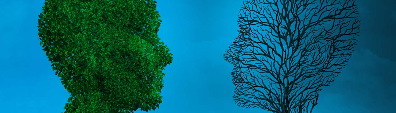 Life Strategies | Crescita Personale Corsi Miglioramento Leadership Sfera Emotiva Igor Sibaldi